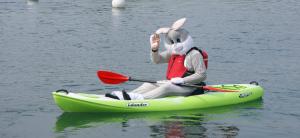 kayak-bunny